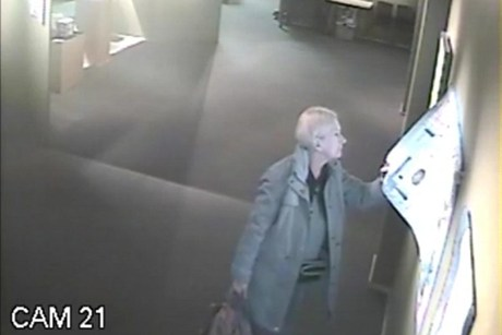 Arrowtown art thief caught on camera