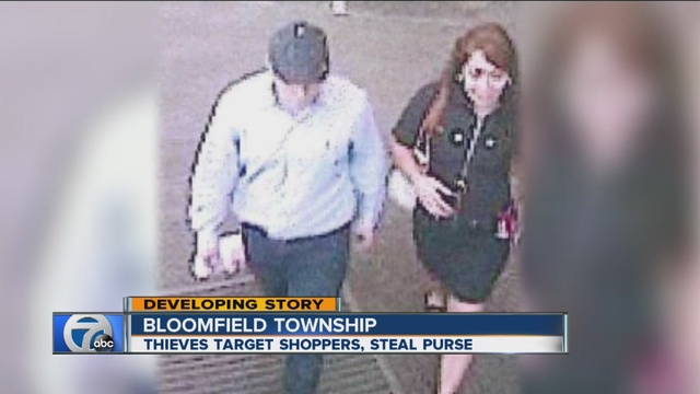 Police searching for wallet-snatching duo in Bloomfield Township